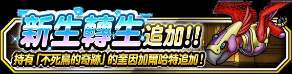 banner_info_tw_981