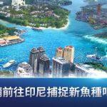 網石宣布《釣魚大亨》推出多項更新 全新主題登場並強化拋竿體驗