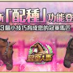《冠軍人馬》新版本「配種」功能開放!三個小技巧育成您的冠軍馬匹!