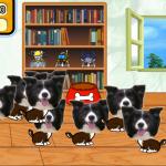 《Own My Game自遊計劃》創新系列作─ 《OMG Dog》將現實寵物狗狗加入手機遊戲裡!
