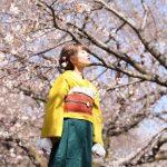 佔據全球14國J-POP排行榜第一名的話題日本YouTuber「Singing Cosplayer Hikari」翻唱動畫「一拳超人」OP主題曲JAM Project「THE HERO!! 〜怒れる拳に火をつけろ」,於全球同時公開音樂&影片